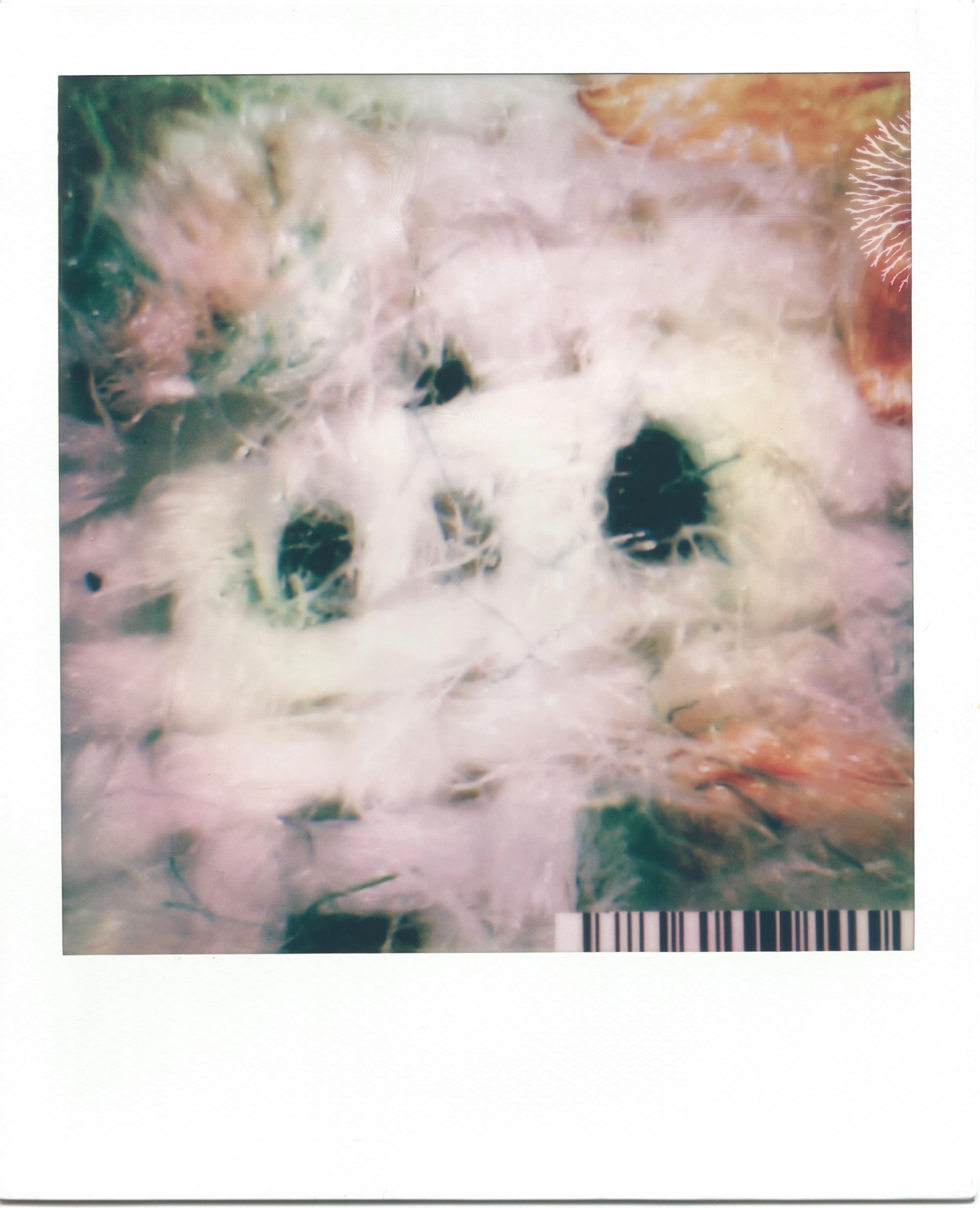 In a white polaroid print frame, is an image of highly magnified textile fibres. Across the image is a woven fabric in a white fibre. Shadows seep through holes across the image, showing the black below. In the corner, orange and pink fibres have mixed with the white. A small barcode sits in the bottom right corner.