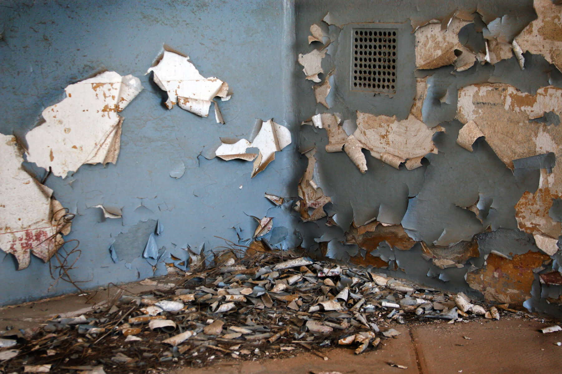 In the corner of a room where two walls meet, blue paint peels from the surface to show the white wall beneath. Curls of peeled paint gather in a pile on the brown floor below.